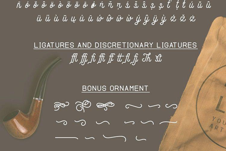Andara Script Font-4
