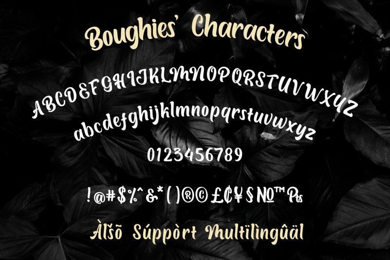 Boughies-Typeface-3