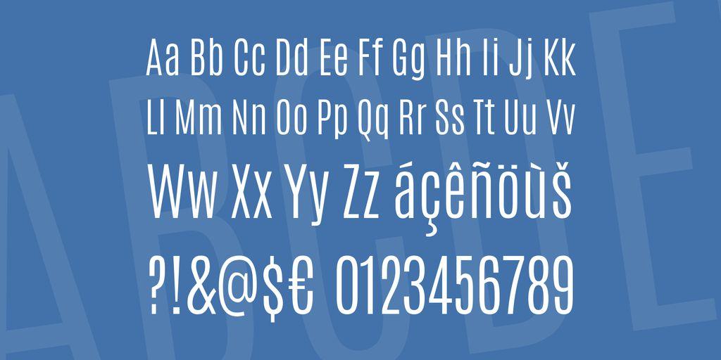 antonio-font-3