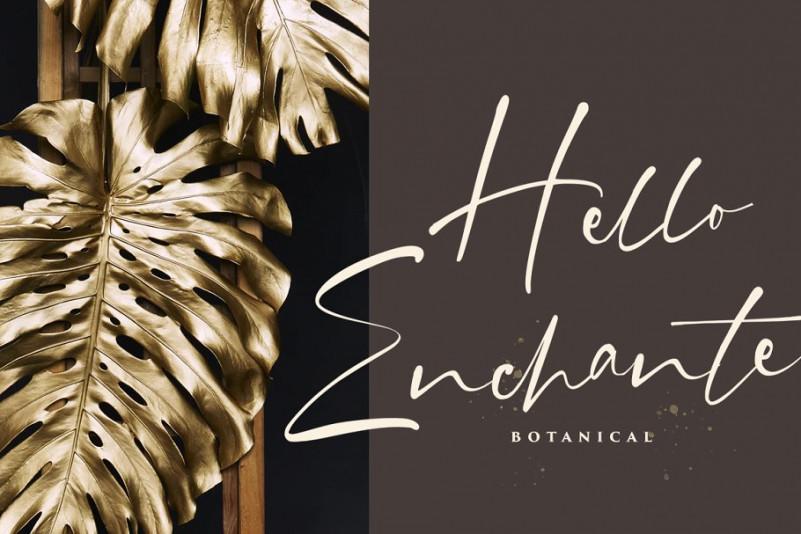 grahamo-signature-font-2