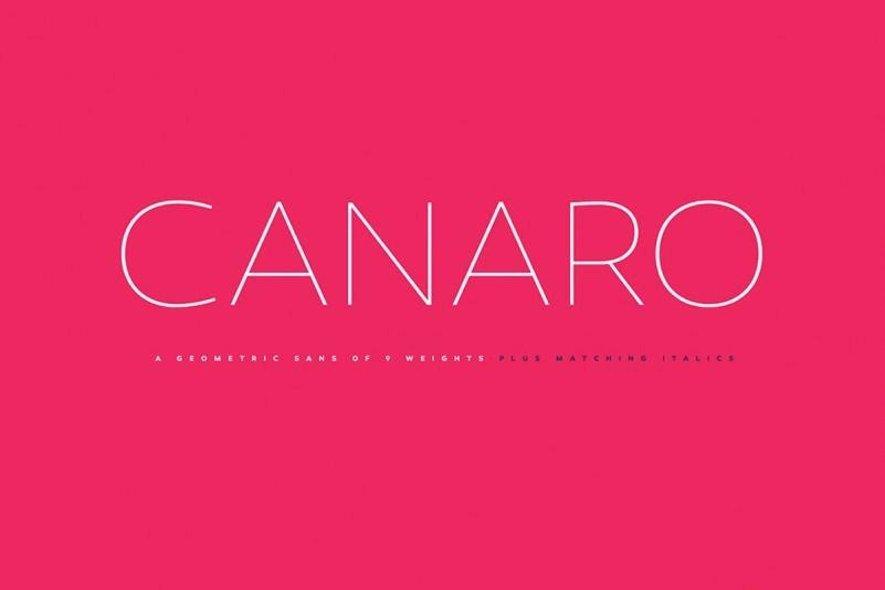 canaro-sans-font-family