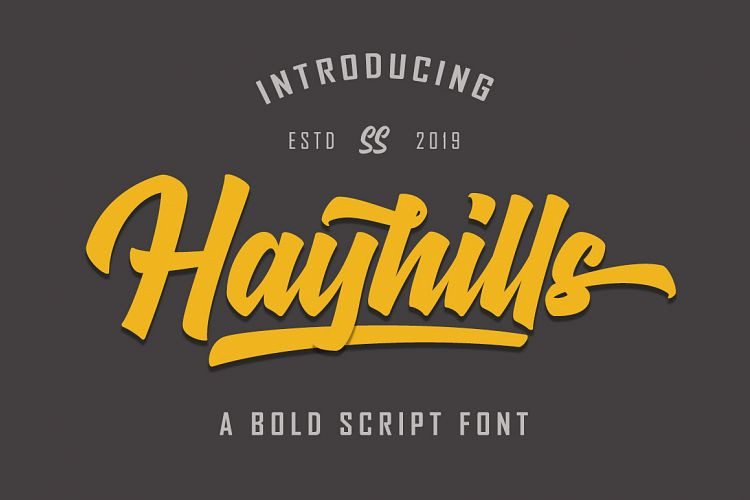 hayhills-bold-script-font