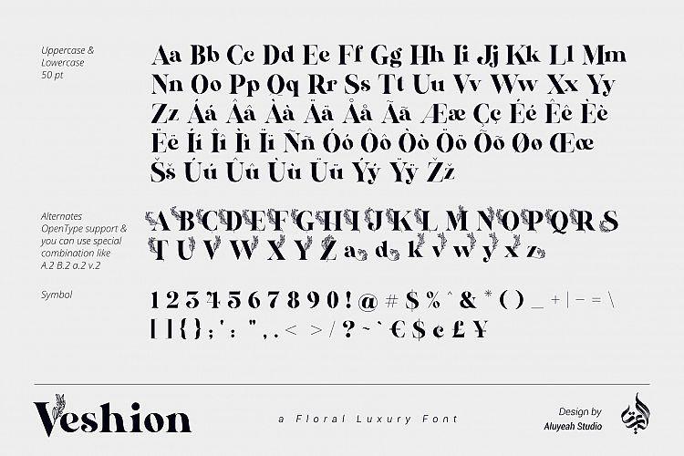 veshion-serif-font-1