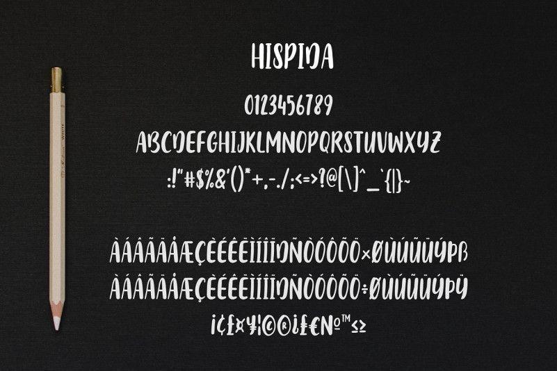 Hispida-Script-Font-3