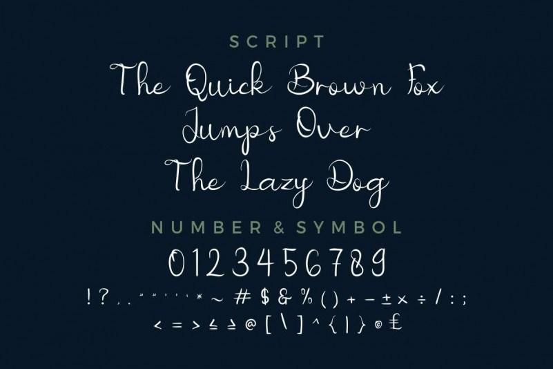 Nicollia-Script-Font-2