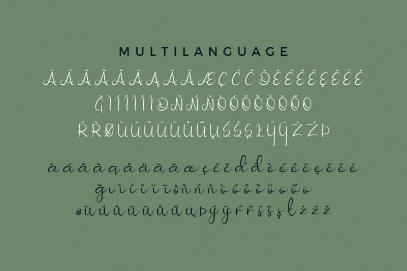 Nicollia-Script-Font-3