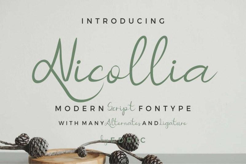 Nicollia-Script-Font