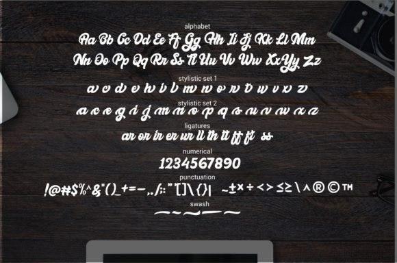 bellynice-bold-script-font-2