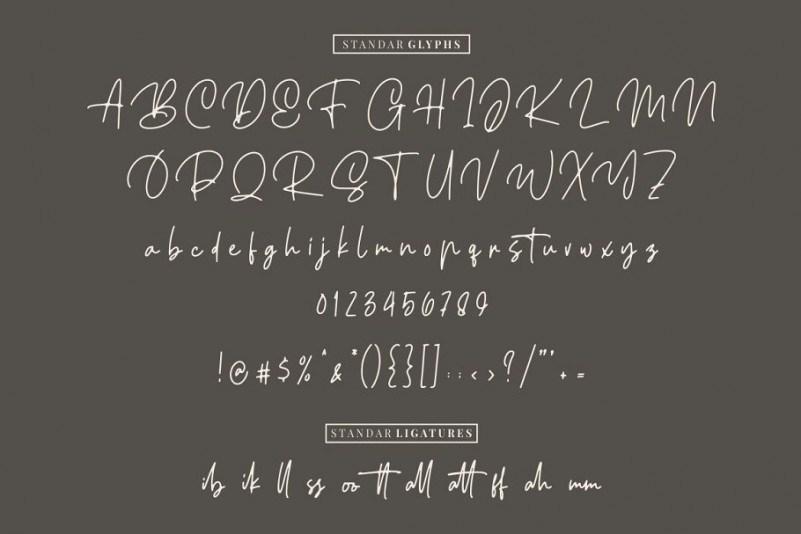 ellouise-script-font-3
