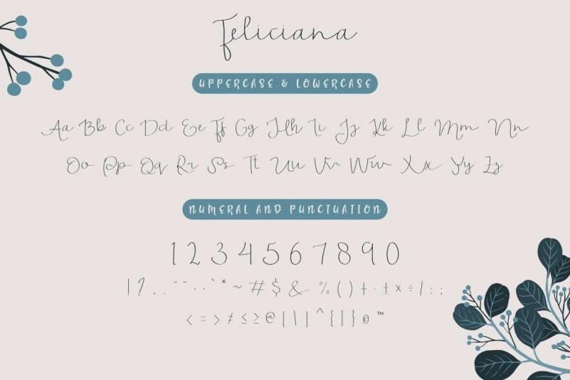 Feliciana-Handwritten-Font-3
