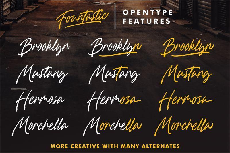 Fountastic-Script-Font-2