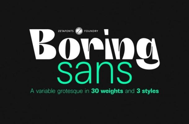 Boring Sans Serif Font Family