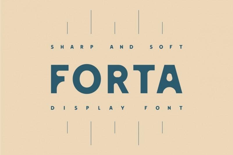 forta-display-font