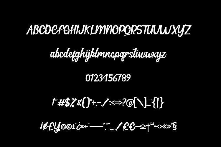 hillton-modern-script-font-2