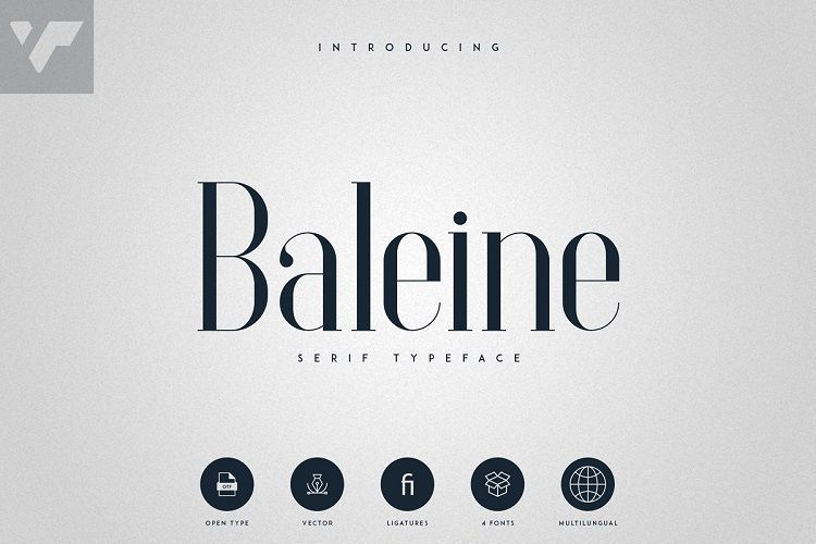 Baleine-Serif-Typeface-1