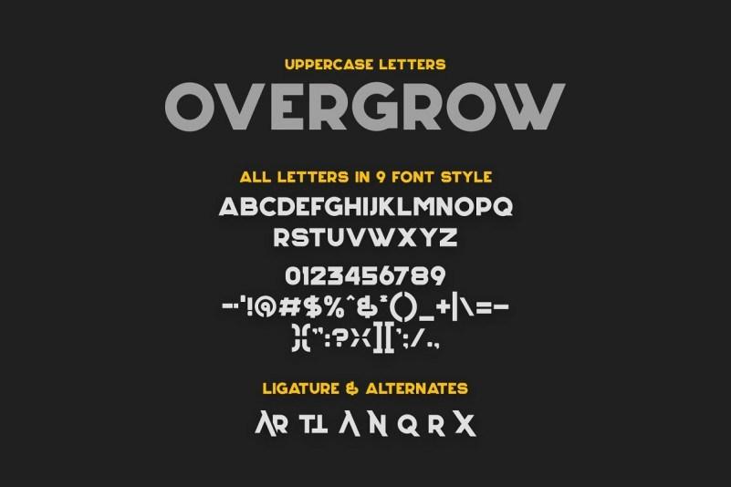 Overgrow-Display-Typeface-3