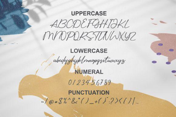 Sidelines-Luxury-Script-Font-3