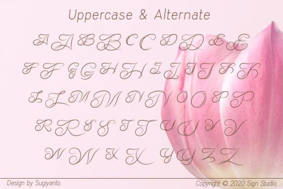 Adelyne-Font-4