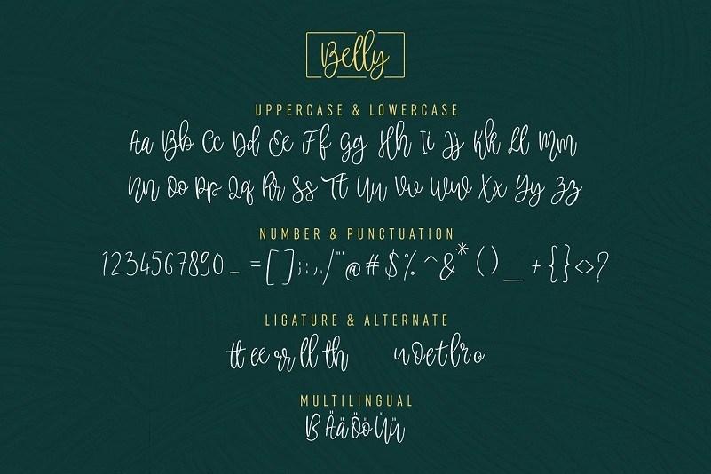Belly-Beauty-Handwritten-Font-3