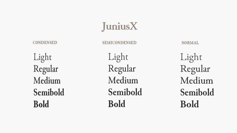 JuniusX-Serif-Font-Family-2