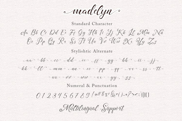 Madelyn-Chic-Script-Font-3