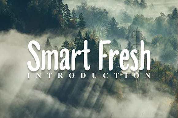 Smart Fresh Display Font