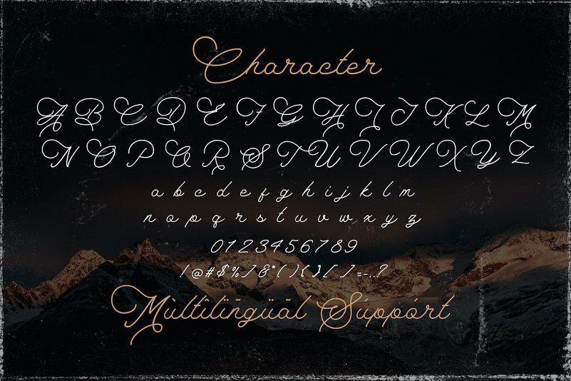 The-Saily-Monoline-Script-Font-3