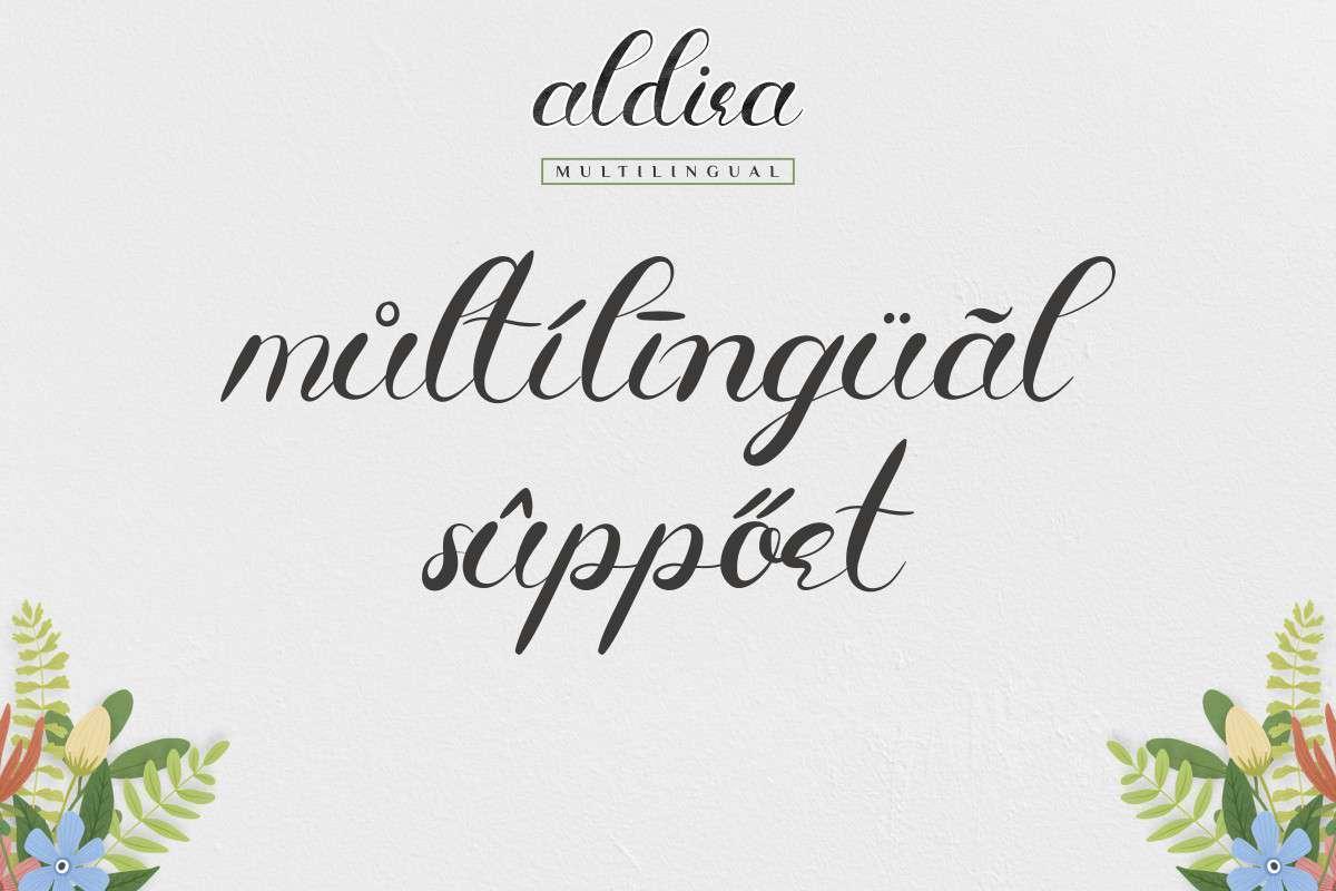 Aldira-Calligraphy-Script-Font-2