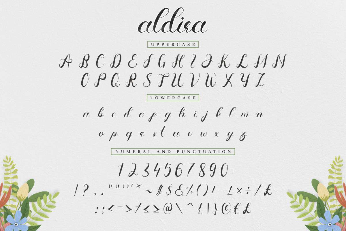 Aldira-Calligraphy-Script-Font-3