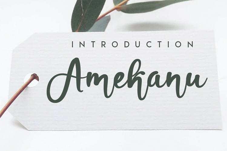 Amekanu-Script-Font-1