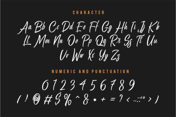 Bella-Regina-Calligraphy-Font-3