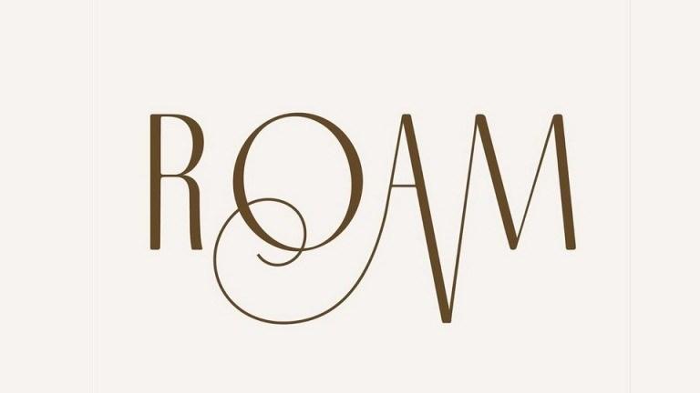 Roam-Sans-Serif-Font-1