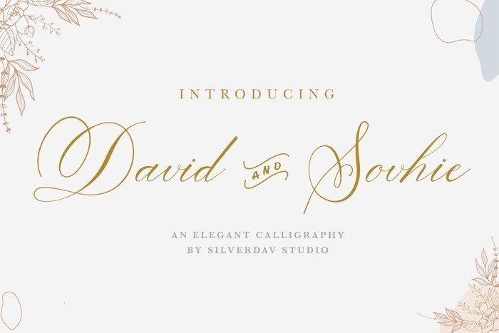 david-and-sovhie-font-1