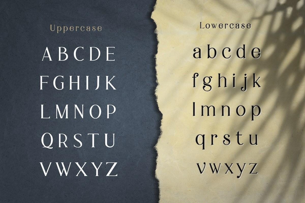 Braga-Serif-Font-3