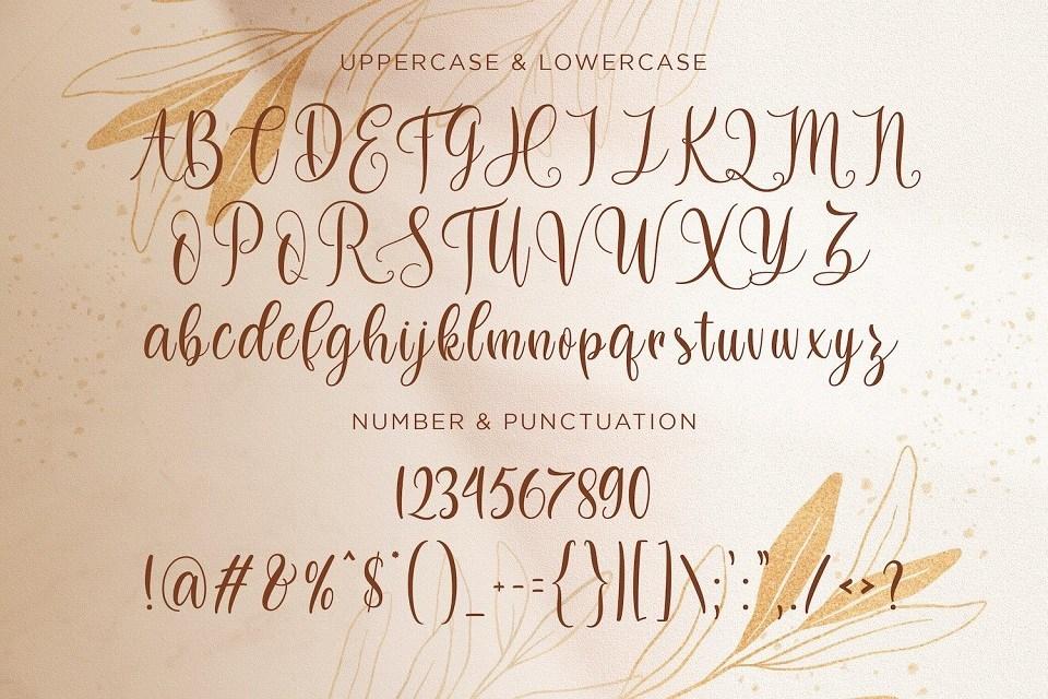 Dilan-Whemsy-Calligraphy-Script-Font-3