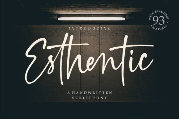 Esthentic Handwritten Script Font