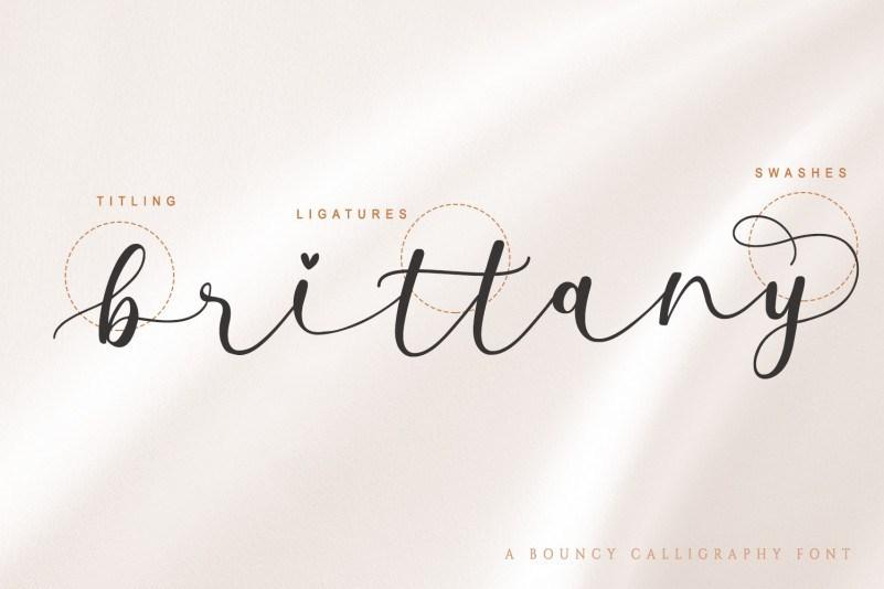 Milda-Bouncy-Calligraphy-Script-Font-3