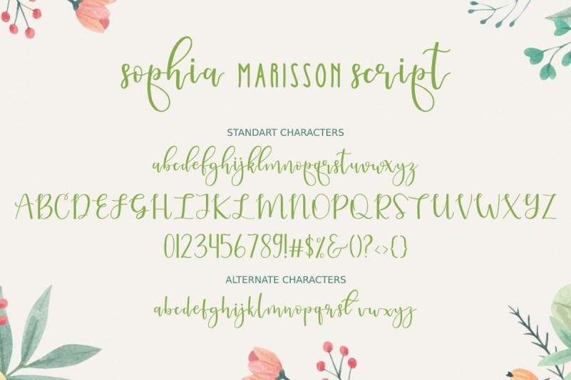 Sophia-Marisson-Script-Font-4