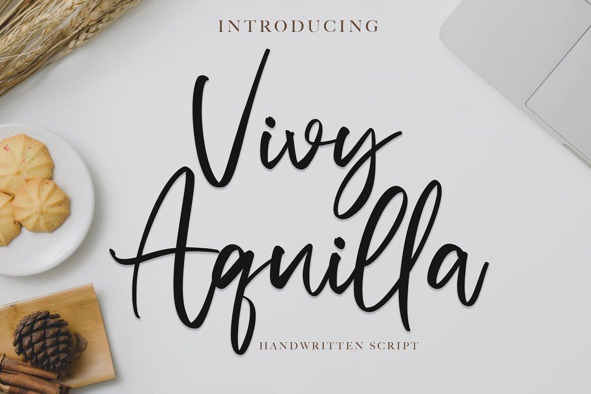Vivy-Aquilla-Handwritten-Font-1