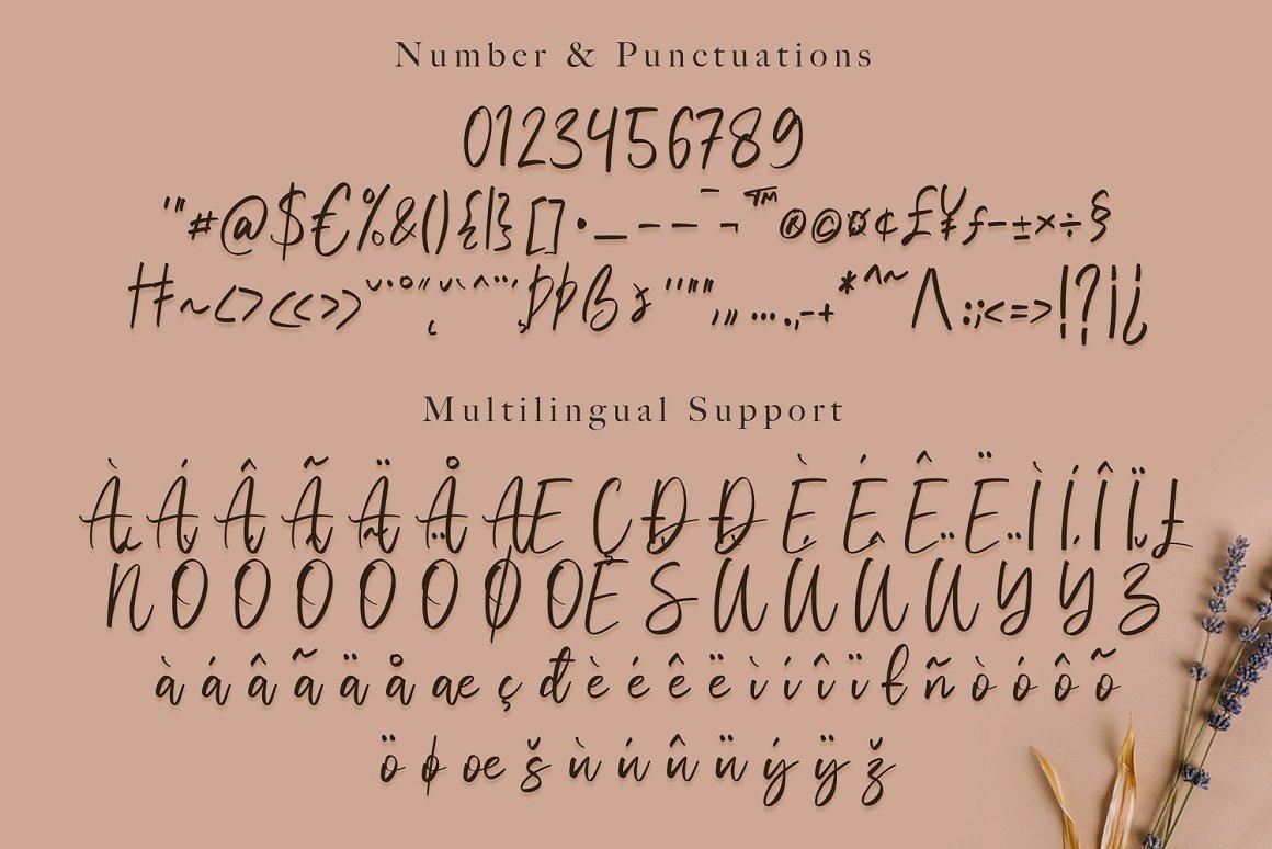 Vivy-Aquilla-Handwritten-Font-4