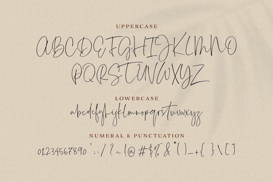 Everleigh-Signature-Script-Font-2
