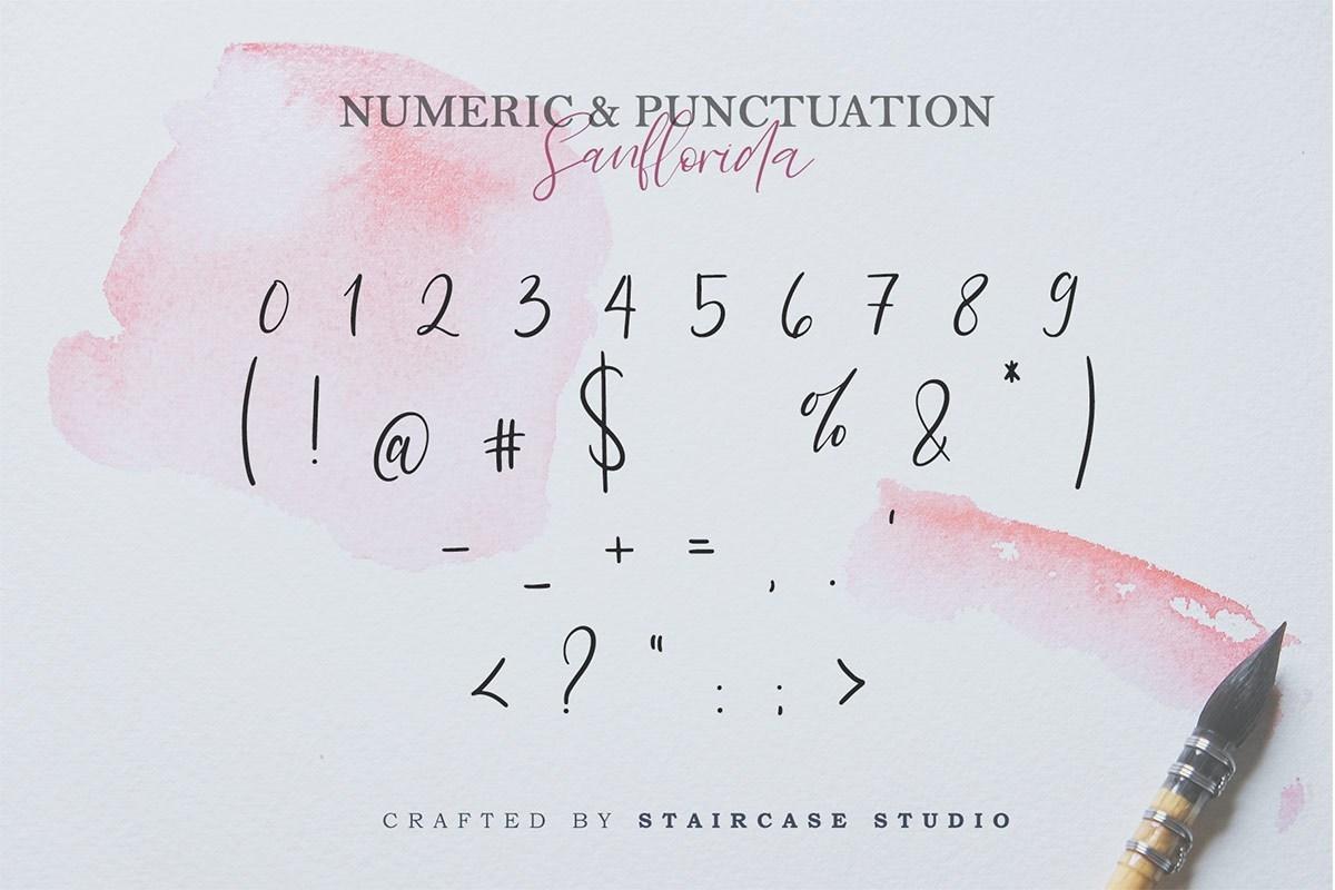 Sanflorida-Handwritten-Script-Font-4