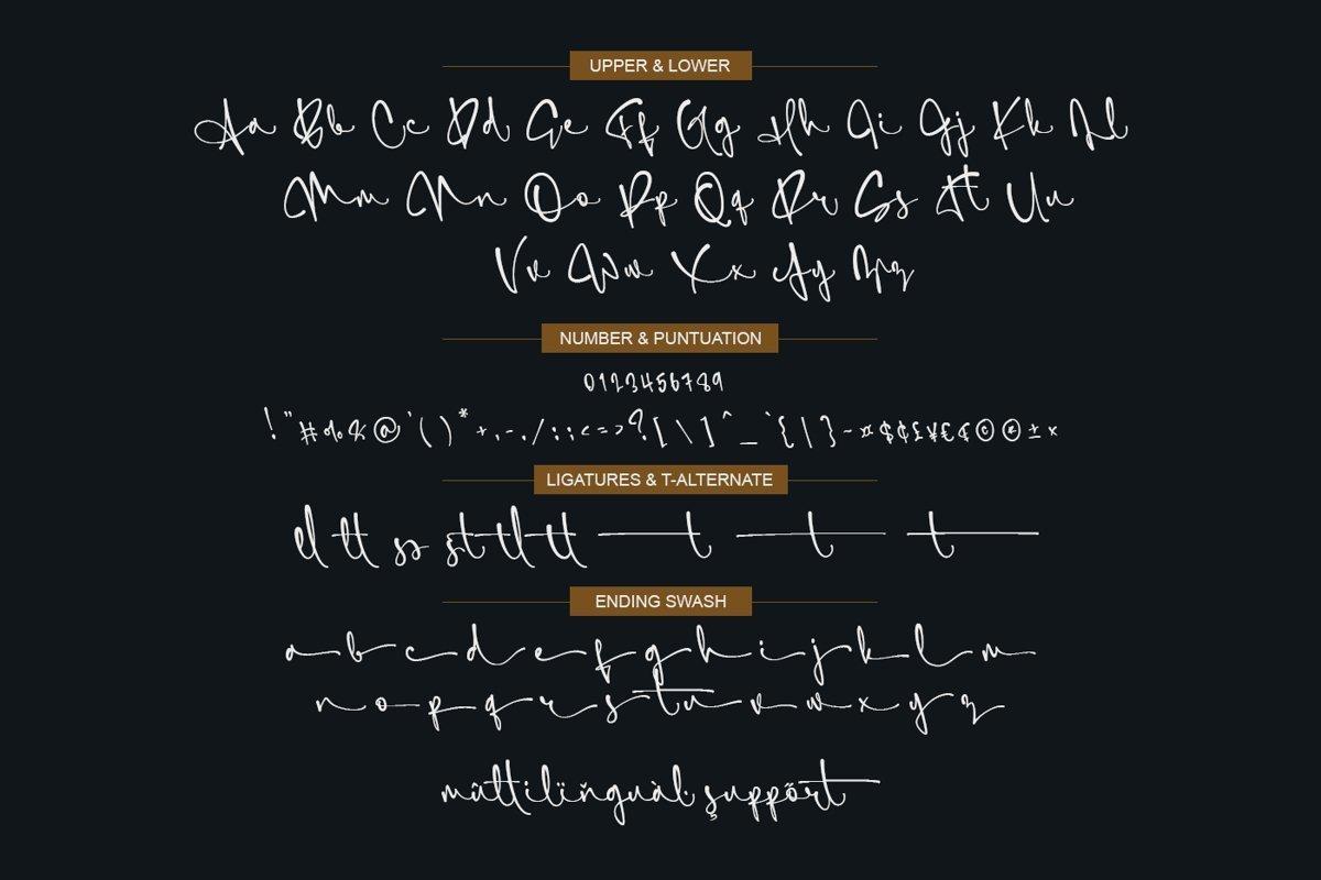 SimfonySign-Signature-Script-Typeface-4