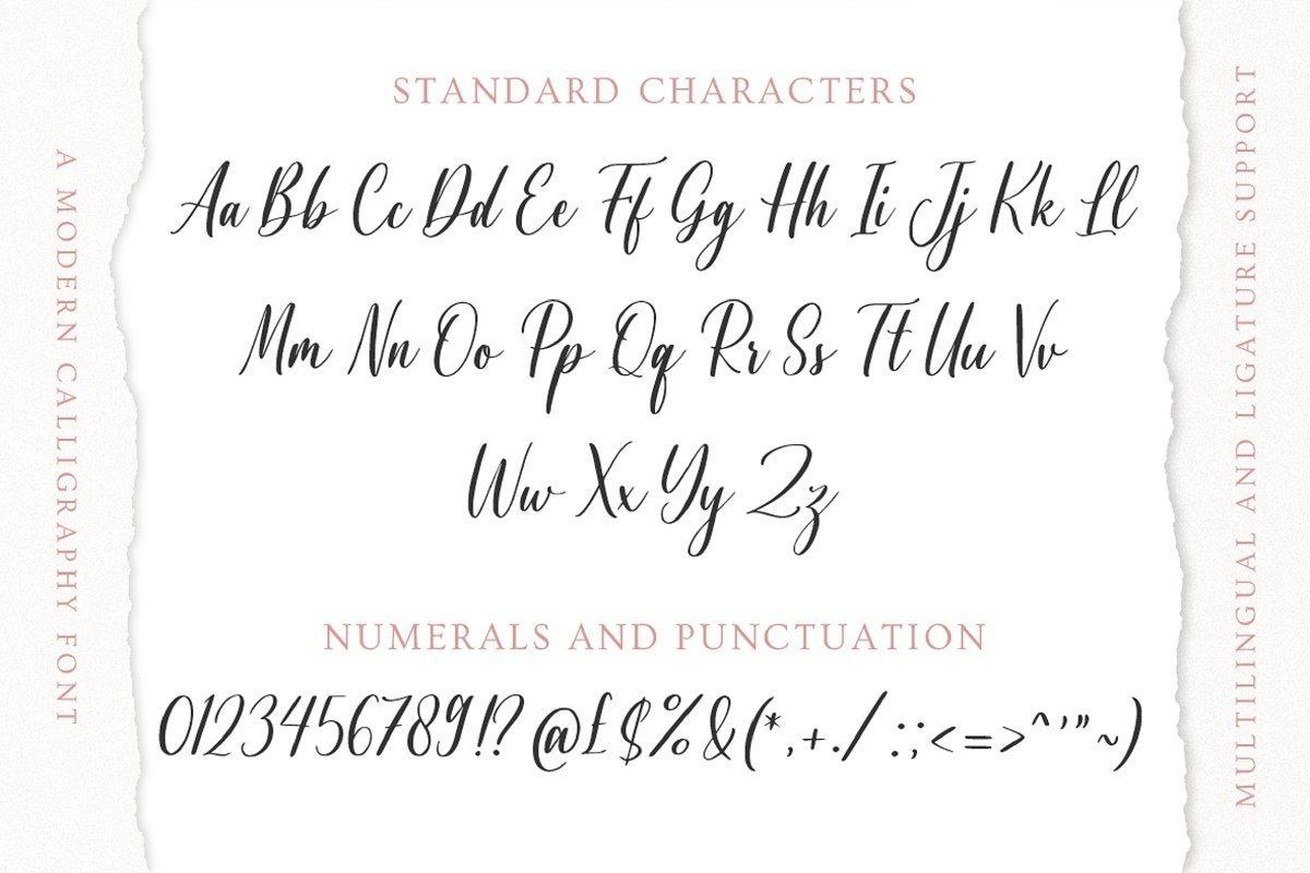 Agnetta-Calligraphy-Script-Font-4
