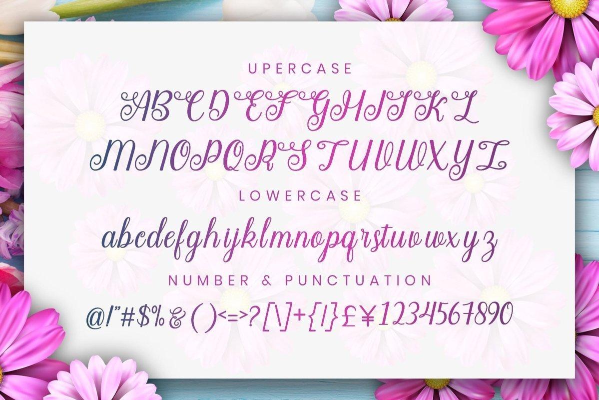 Angella-Calligraphy-Script-Font-3