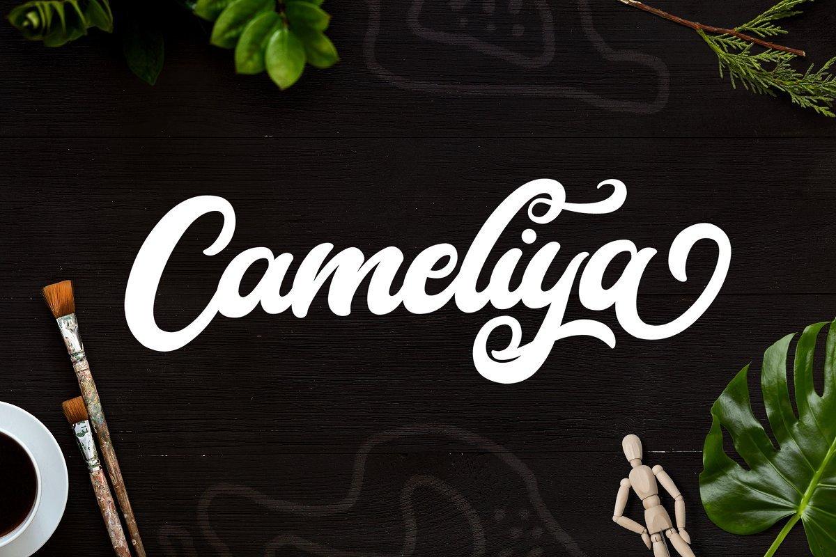 Cameliya-Bold-Calligraphy-Script-Font-1