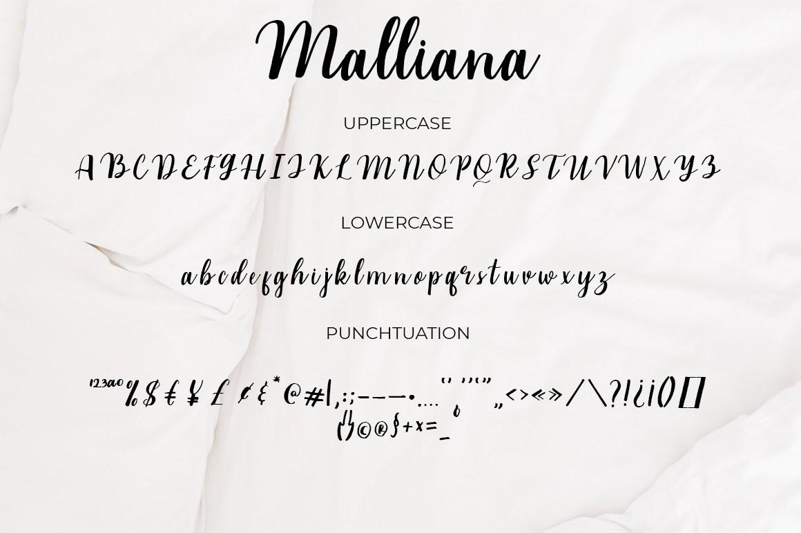 Malliana-Handwritten-Script-Font-3
