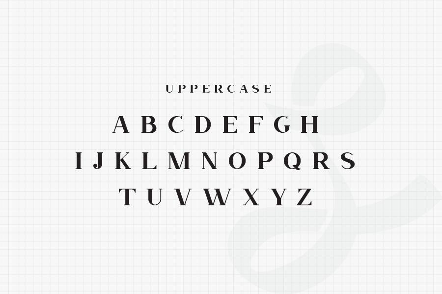 Nevada-Bold-Slab-Serif-Typeface-3