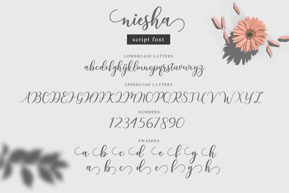 Niesha-Modern-Calligraphy-Script-Font-3