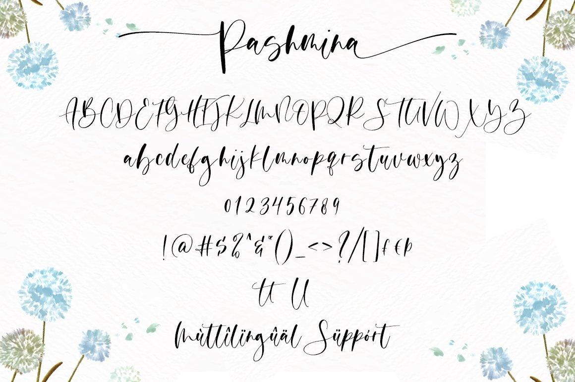 Pashmina-Handwritten-Script-Font-4